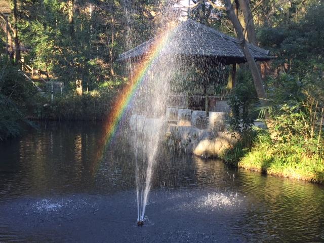 おとめ山の虹