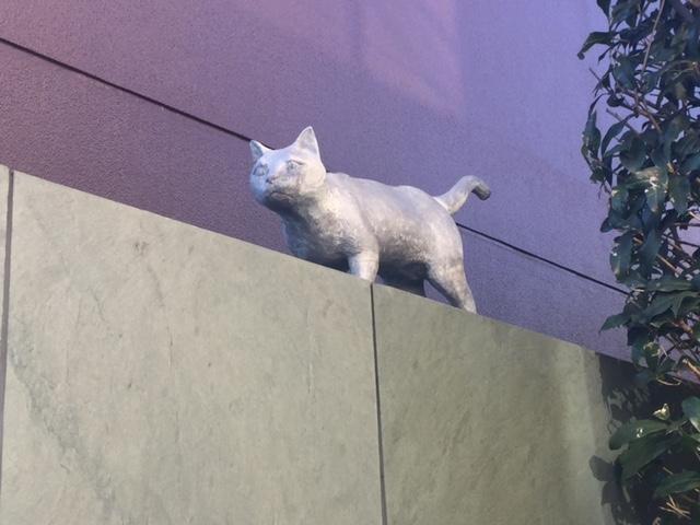 夏目漱石邸の猫