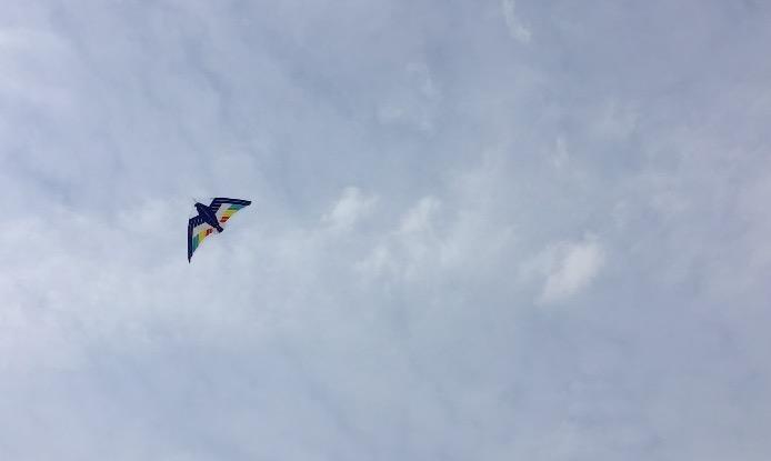 田舎で凧揚げ