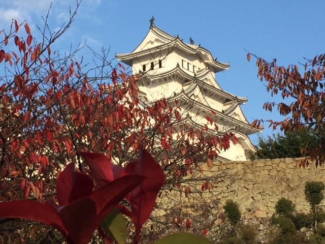 今日の姫路城