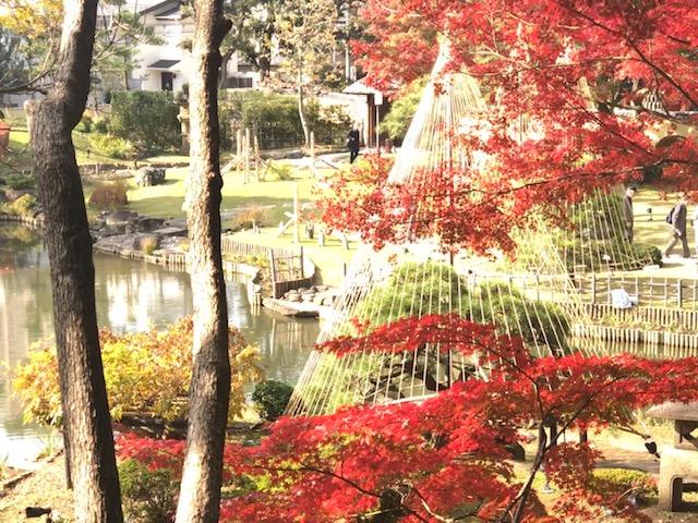 細川庭園の紅葉